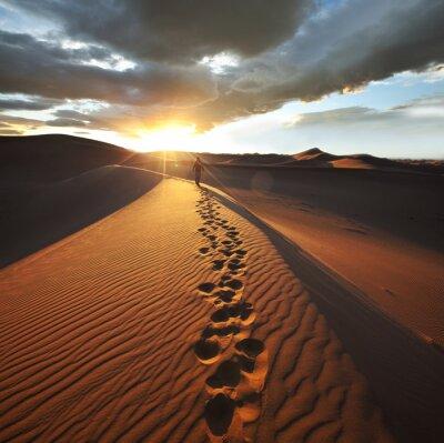 Papiers peints Randonnée dans le désert