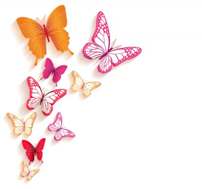 Papiers peints Realistic Colorful Butterflies Isolated for Spring