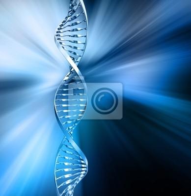 Résumé ADN