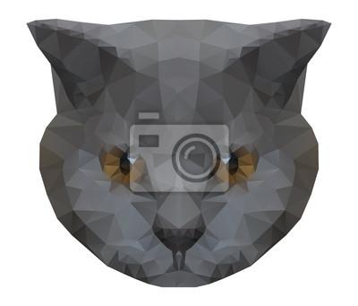 Résumé chat polygonale