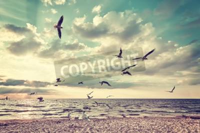 Papiers peints Rétro plage stylisée avec des oiseaux volants au coucher du soleil.