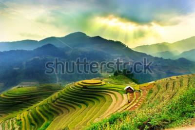 Papiers peints Rice fields on terraced of Mu Cang Chai, YenBai, Vietnam. Vietnam landscapes.