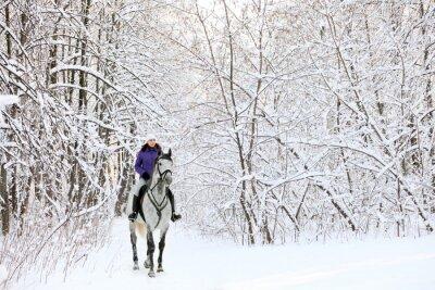 Papiers peints Rider à cheval au bord de bois recouvert de neige en hiver