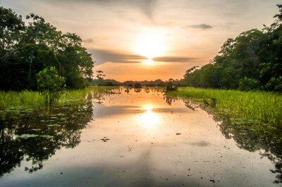 Papiers peints Rivière, amazone, forêt tropicale, crépuscule, Pérou, sud, amérique
