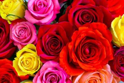 Papiers peints Roses background
