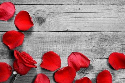 Papiers peints Rouges, rose, pétales, noir, blanc, bois, fond