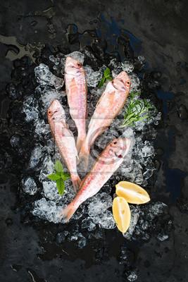 Rouges, rouges, Mullet, fish, citron, menthe, romarin ...