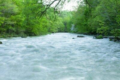 Papiers peints Ruisseau, vert, forêt