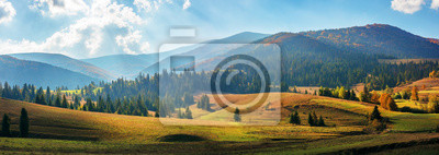 Papiers peints rural area of carpathian mountains in autumn. wonderful panorama of borzhava mountains in dappled light observed from podobovets village. agricultural fields on rolling hills near the spruce forest