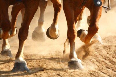 Papiers peints Sabots de cheval galopant