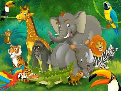 Dessin animé safari