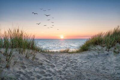 Papiers peints Sand dunes on the beach at sunset