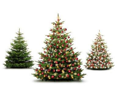 sapins de Noël