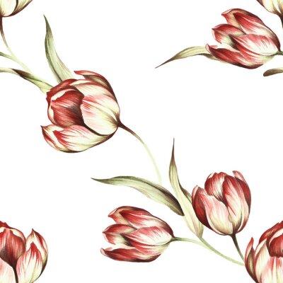 Papiers peints Seamless, modèle, tulipes Main, traction, aquarelle, Illustration