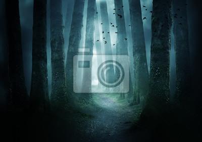 Papiers peints Sentier à travers une sombre forêt