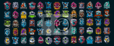 Papiers peints Set of animal emblems. Bear, dinosaur, eagle, leopard, wolf, horse, fox, lion, grizzly, raptor, hawk, jaguar, cat, lynx, leo, stallion, birds. Sports mascots, colorful collection, vector illustration