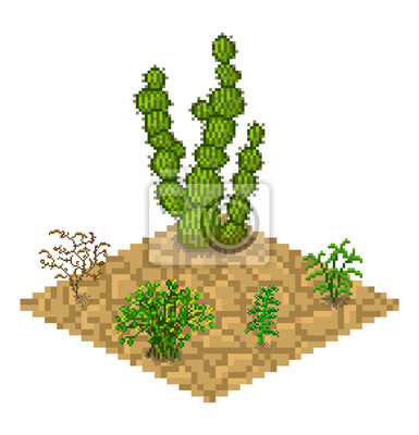 Set of vector isolated cactus plants