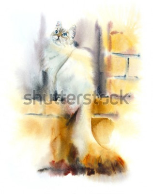 Papiers peints Siberian cat sits on the window. Watercolor hand drawn illustration