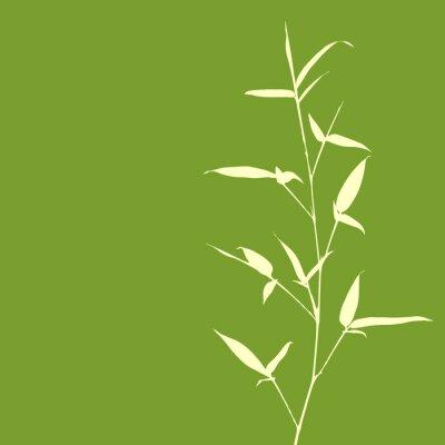 Papiers peints Silhouette de bambou sur fond vert