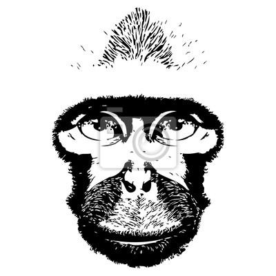 Singe tête avatar, signe du zodiaque chinois, silhouette noire isolée