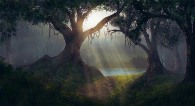 Papiers peints Soleil, rayons, forêt