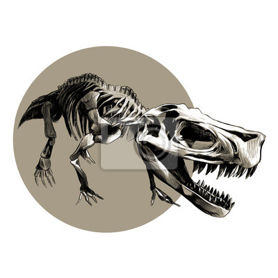 Squelette dinosaure t rex vecteur noir blanc dessin mod le papier peint papiers peints - Modele dessin dinosaure ...