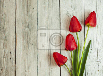 still life with tulips and cherry blossom