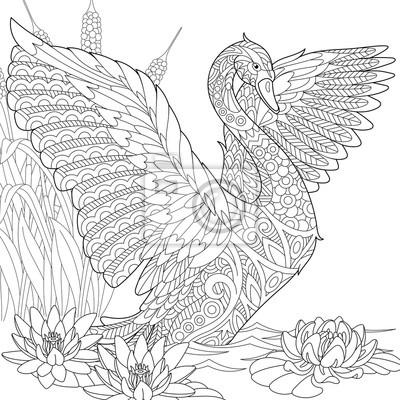 Coloriage Fleur De Nenuphar.Papiers Peints Stylise Beau Cygne Parmi Les Nenuphars Fleurs De Lotus Et Lherbe