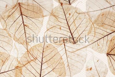 Papiers peints t-shirt saree indien mur et sol en marbre pour carrelage cuisine et salle de bain pour impression, fond abstrait texture fleur, tissu textile