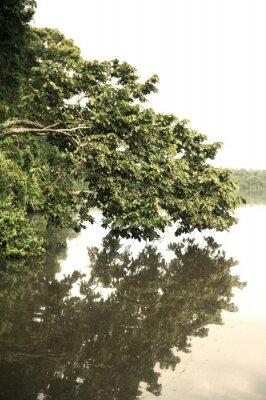 Papiers peints Tambopata Province À l'extérieur