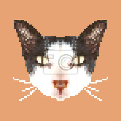 Papiers Peints Tête De Chat Pixel Art Isolé Carré Animal Vecteur Illustration
