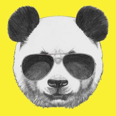 Papiers peints Tiré par la main portrait de panda avec des lunettes de soleil. Vecteur isolé éléments.