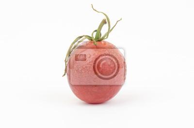 Tomate fraîche