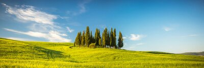 Papiers peints Toscane au printemps