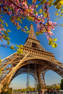 Papiers peints Tour Eiffel pendant le printemps à Paris, France
