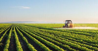 Papiers peints Tracteur, pulvérisation, soja, champ