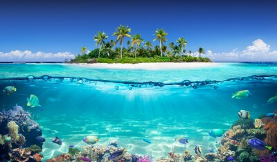 Papiers peints Tropical Island And Coral Reef - Split View With Waterline