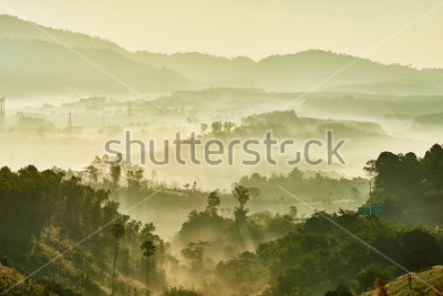 Papiers peints Tropical nature landscape mountains forest with slightly fog in morning and sunlight, Thailand.