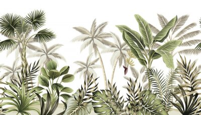 Papiers peints Tropical vintage botanical landscape, palm tree, banana tree, plant floral seamless border white background. Exotic green jungle wallpaper.