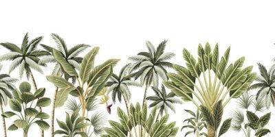 Papiers peints Tropical vintage botanical palm trees, banana tree floral seamless border white background. Exotic jungle wallpaper.