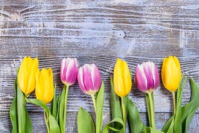 Papiers peints Tulipe, fleurs, bois, fond