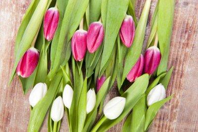 Papiers peints tulipes