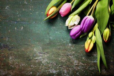 Papiers peints Tulipes, bois, fond