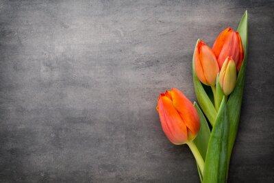 Papiers peints Tulipes, orange sur le fond gris.