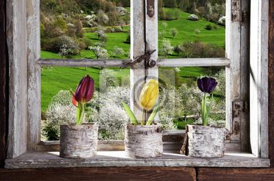 Papiers peints Tulipes par la fenêtre en regardant le paysage