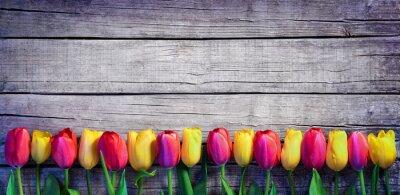 Papiers peints Tulipes, rang, vendange, planche, ressort, fond