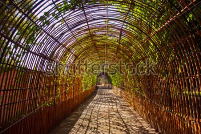 Papiers peints Tunnel bois courbe bambou dans un parc
