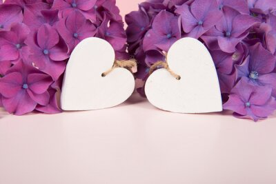Two wooden white hearts surrounded by blooming hortensia flowers on a soft pastel colored background with copy space