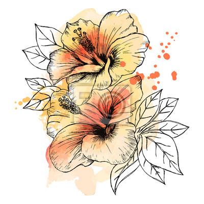 Papiers Peints Un Bouquet De Fleurs Dhibiscus Tropicales Dessin Dessiné à