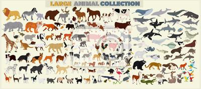 Papiers peints Un grand ensemble d'animaux du monde sur un fond clair.